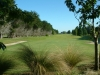 invercargill-gc-8th-hole-2